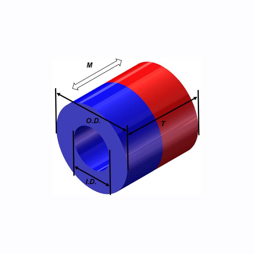 Forma de anel de momento magnético