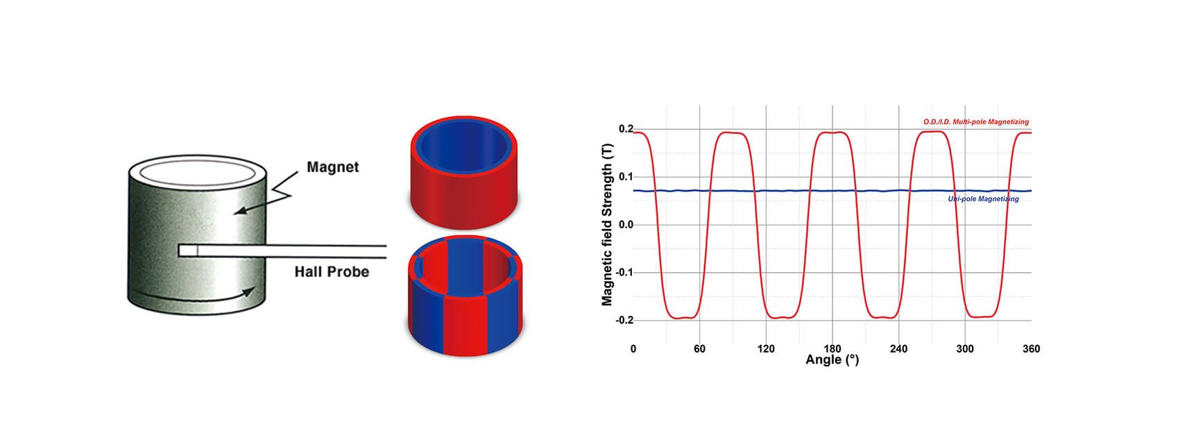 Ímãs de anel radialmente orientados-2